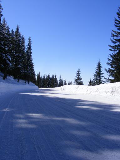 cold mountain free pdf download