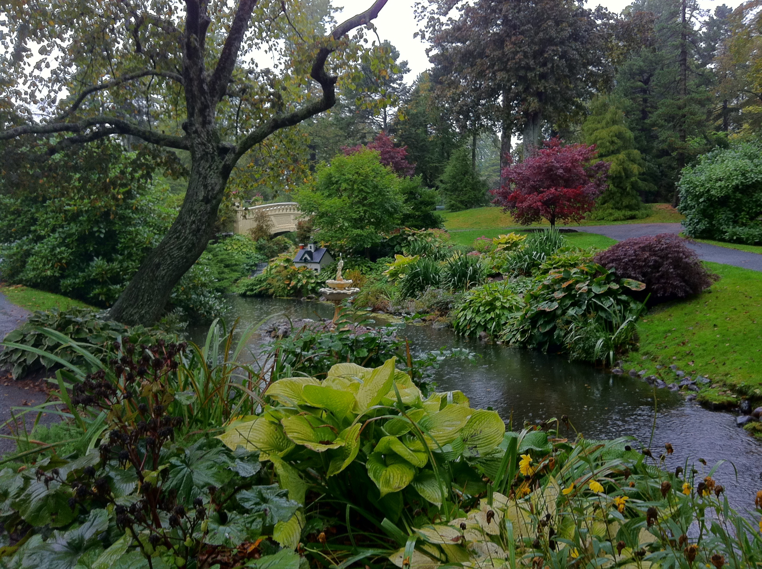 Free Images Botanical Garden Foliage Nature