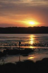 Sunset reflected on open water with nesting box in foreground and far shore in background.jpg