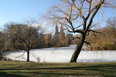 central-park-new-york-winter-1211930.jpg