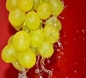 grape-cluster-grapes-pouring-water-958247.jpg