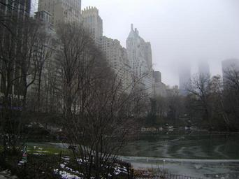 central-park-new-york-city-fog-409573.jpg