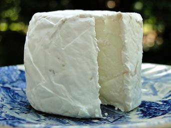 cheese-goat-cheese-rind-round-567367.jpg