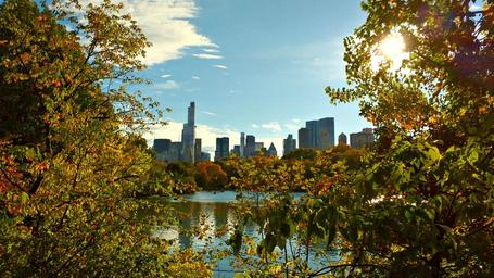new-york-central-park-nyc-manhattan-1046218.jpg
