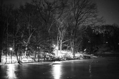 central-park-night-shade-246232.jpg