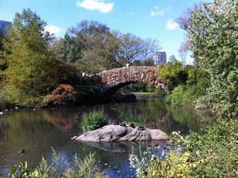 central-park-new-york-bridge-water-957609.jpg