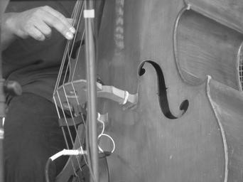double-bass-music-jazz-525823.jpg