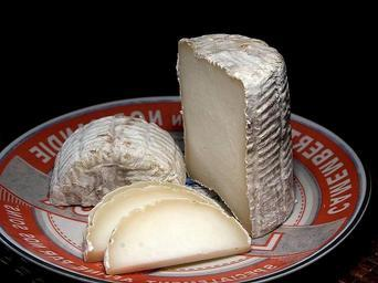 Tronchetto cheese.jpg