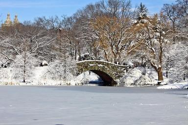 Winter-Central-Park-Manhattan-New-York.jpg