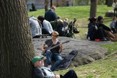 guitar-central-park-man-music-1133354.jpg