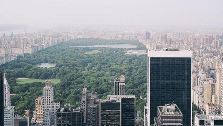 central-park-new-york-nyc-manhattan-1031343.jpg