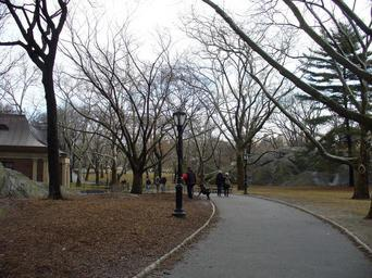 central-park-new-york-manhattan-206134.jpg