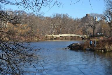 central-park-park-winter-lake-593441.jpg