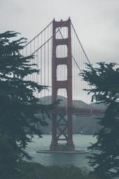 golden-gate-bridge-san-francisco-801845.jpg