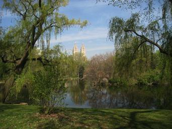Central-Park-Pond-New-York.jpg