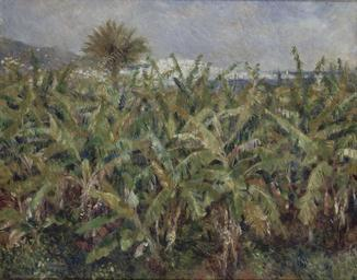 Auguste_Renoir_-_Field_of_Banana_Trees_-_Google_Art_Project.jpg