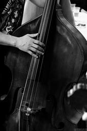 music-double-bass-concert-788062.jpg
