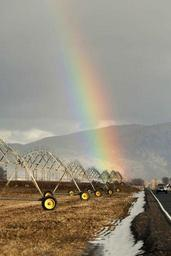 Rainbow arches over the irrigation wheel line.jpg