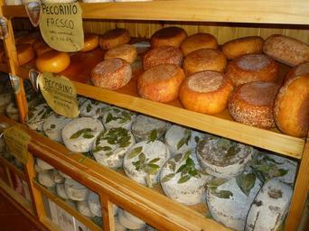 cheese-cheese-loaf-tuscany-italy-386325.jpg